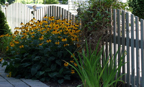 gaeden fence, picket fence, fence designes, how to